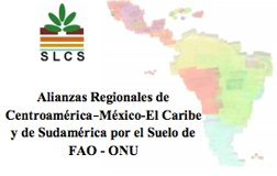 Año Internacional del suelo LA (2)